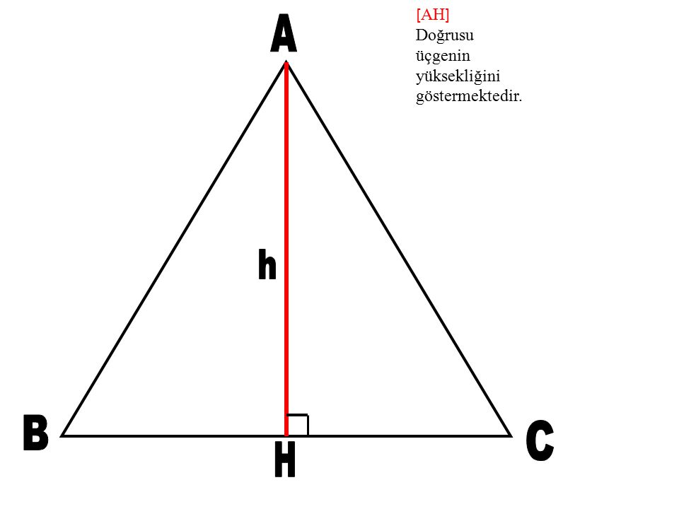 [AH] Doğrusu üçgenin yüksekliğini göstermektedir. A h B C H